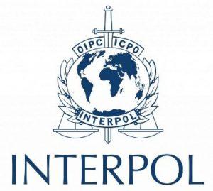 interpol-368x330