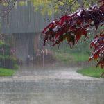 आज देशभर ठूलो वर्षा हुने, सतर्क रहन बाढी पूर्वानुमान शाखाको आग्रह