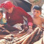 कालिकोटको हविगतः के खान्छन्, कहाँ बस्छन् ? कालिकोटमा फैलिएका मुख्य महामारी र क्षति