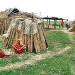 गुलरियाको सार्वजनिक जग्गा आठ वर्षदेखि भारतीयको कब्जामा जग्गा