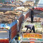 निर्यात बढ्दै, आयात घट्दै : निर्यातमा पाम आयलको हिस्सा धेरै